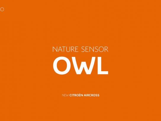 Citroën Audio Ad - Owl