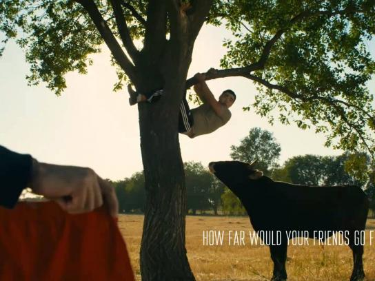 Heist He Wrote Film Ad -  How far would your friends go for you - Bull