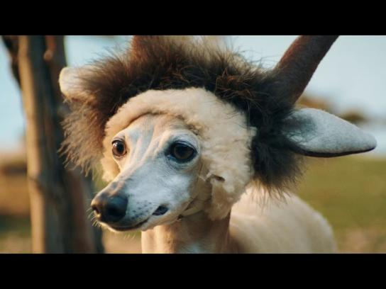 Missouri Lottery Film Ad - A Little Taste of Big Adventure - Little Serengeti