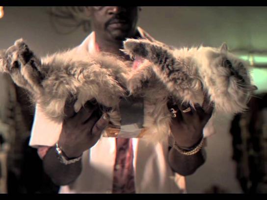 Flying Horse Film Ad -  Gatorrada / Cat-Toast