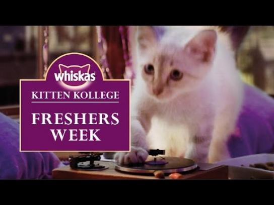 Whiskas Digital Ad -  Kitten College - Freshers Week