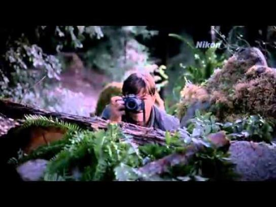 Nikon Film Ad -  Tree