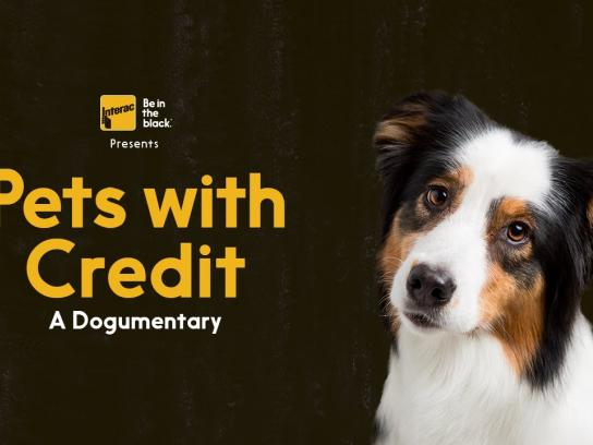 Interac Film Ad -  Pets with credit