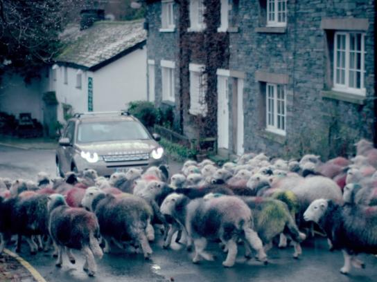 Land Rover Digital Ad -  The Hibernot Family, Day 2