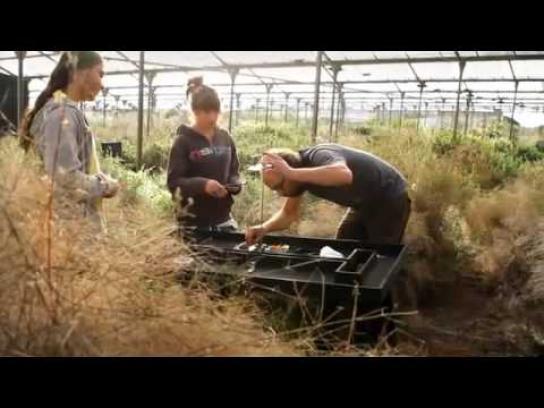 Sony Ericsson Film Ad -  Challenge greenhouse