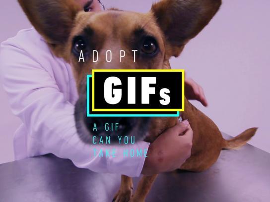 Entel Digital Ad - AdoptGif