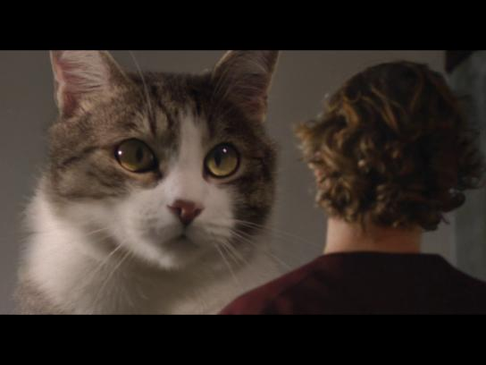 Perrier Digital Ad - Say no to ordinary - Home