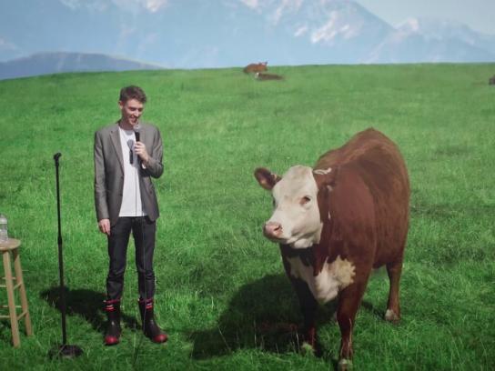 New Zealand Jerky Film Ad - Roundup