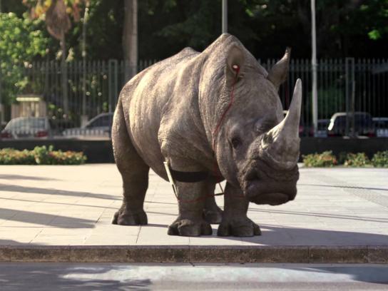 TNT Energy Drink Film Ad -  Rhino