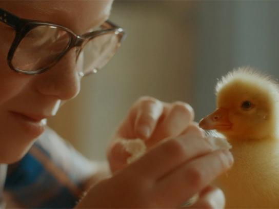 GAIA Film Ad - Where Love for Animals Ends, Ours Begins