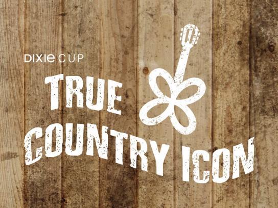 Dixie Digital Ad - True Country Icon