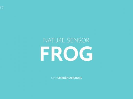 Citroën Audio Ad - Frog