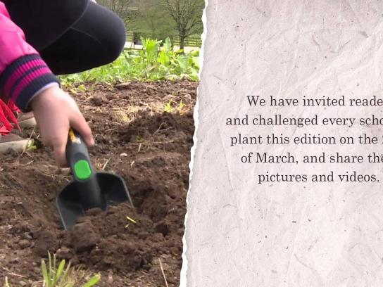 Sabado Ambient Ad -  Seeds cover