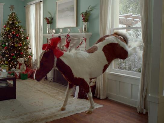 ebay Film Ad -  Holidays, Pony