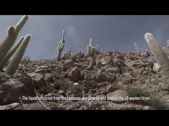 LG Film Ad - Cactus