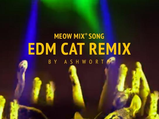 Meow Mix Digital Ad -  Ashworth