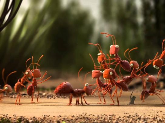 De Lijn Film Ad -  Ants
