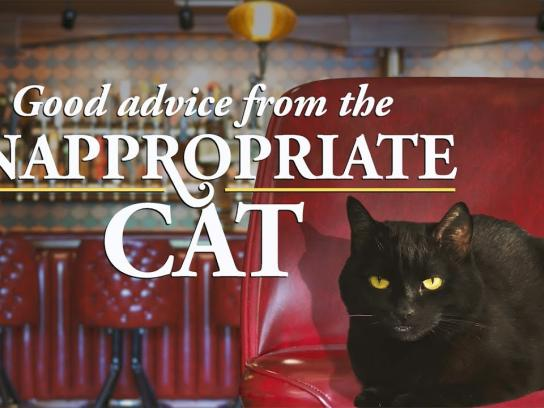 "HopCat Digital Ad - How to Pronounce ""Vladimir Poutine."" Good Advice from the Inappropriate Cat."
