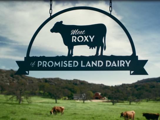 Promised Land Dairy Film Ad - Meet Mildred