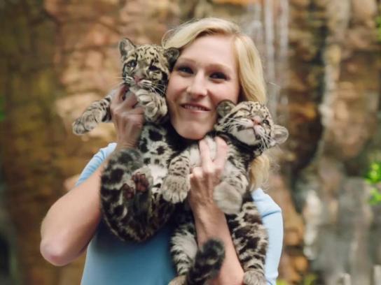 Columbus Zoo and Aquarium Digital Ad - Carnivores vs. Herbivores