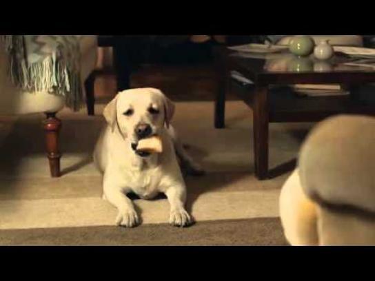 King's Hawaiian Film Ad -  Vacuum