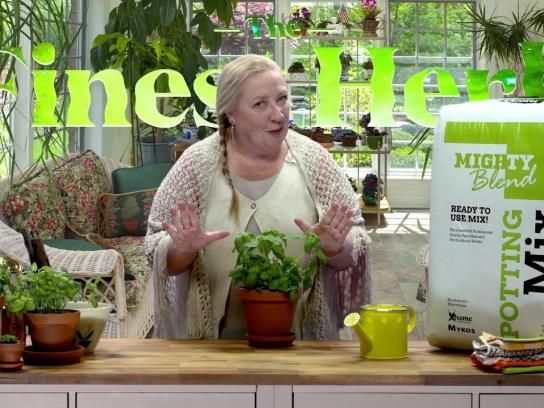 Mighty Blend Integrated Ad - The Finest Herb with Aunt Mary