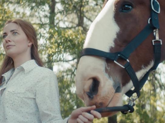 Purina Film Ad - April & Dixie