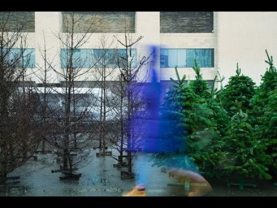 Treepex Ambient Ad - Burned Christmas Trees