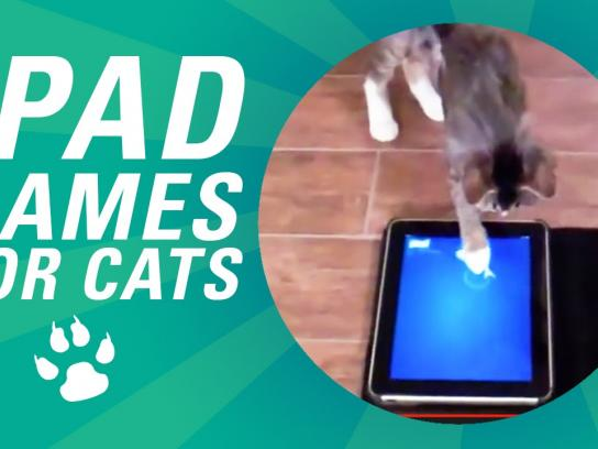 Friskies Digital Ad -  iPad Games for Cats