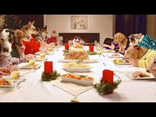 Freshpet Digital Ad -  Holiday feast