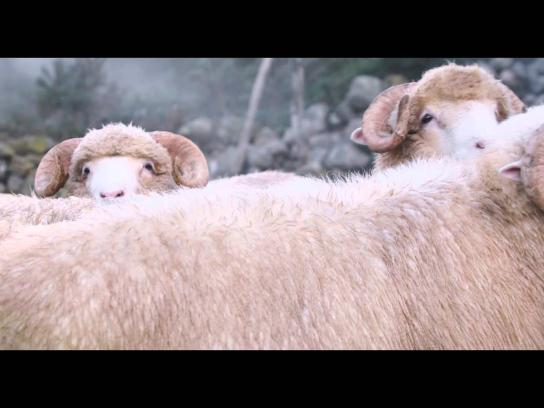 Hotpoint Film Ad -  The cycle of respect