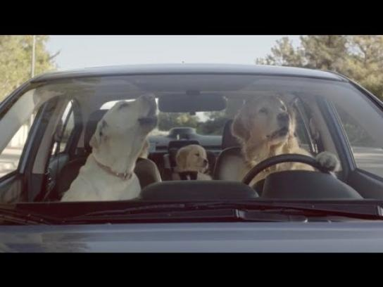 Subaru Film Ad -  Whats the Fuss About?