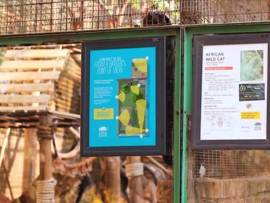 Johannesburg Zoo Ambient Ad -  The World's First LIVE Tweeting Badger