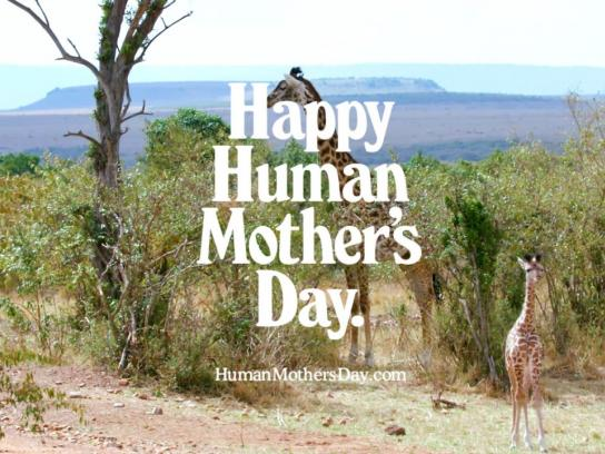 Mother Film Ad - Happy Human Mother's Day - Giraffe