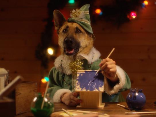 Freshpet Film Ad -  Santa's elves