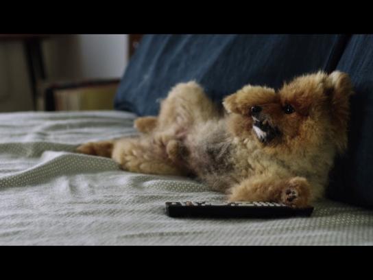 OUIBUS Film Ad - OUICROQUETTE