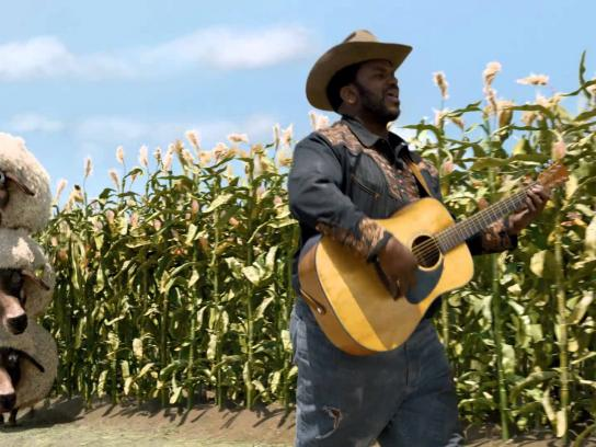 Hay Day Film Ad -  Cowboy