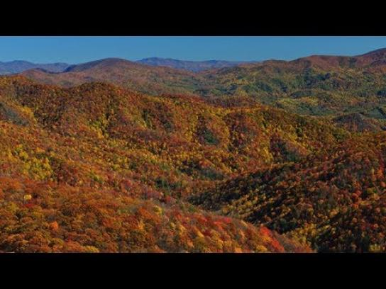 Tennessee Department of Tourist Development Film Ad - Color Blindless Viewer