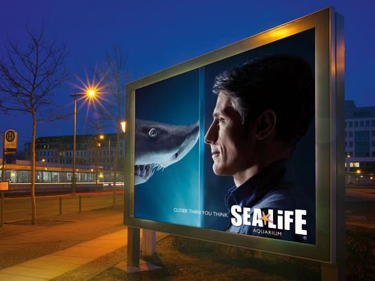 Sea Life Aquarium Outdoor Ad -  Shark