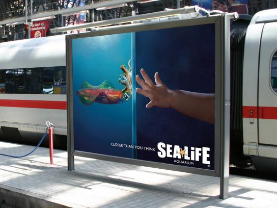 Sea Life Aquarium Outdoor Ad -  Squid