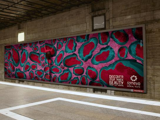 Synevo Medical Labs Outdoor Ad -  The Inner Beauty Exhibition, 6
