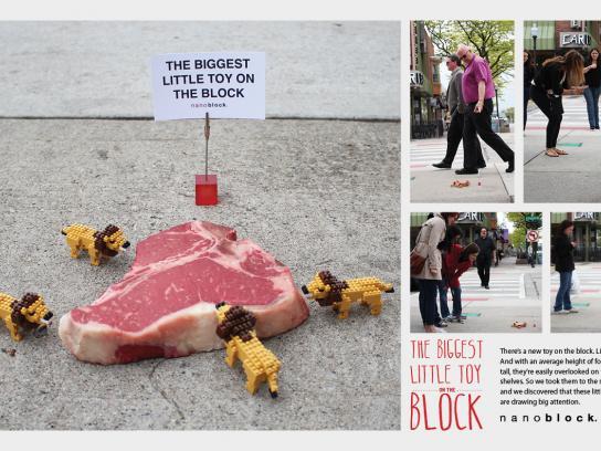 Nanoblock Ambient Ad -  Lions
