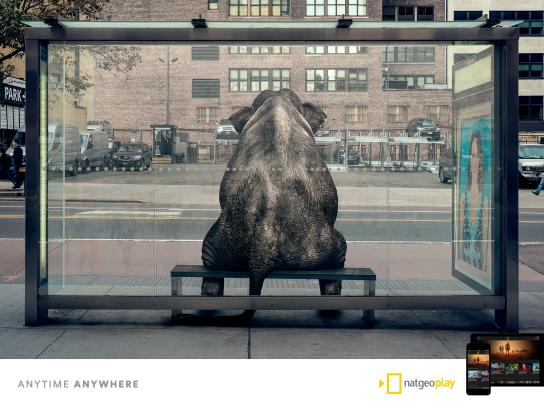 National Geographic Print Ad - NatGeo Play, 2