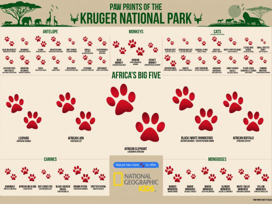 National Geographic Outdoor Ad -  Big five
