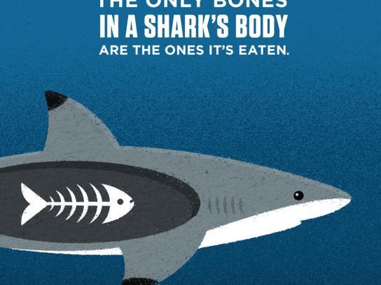 Vancouver Aquarium Print Ad -  No bones