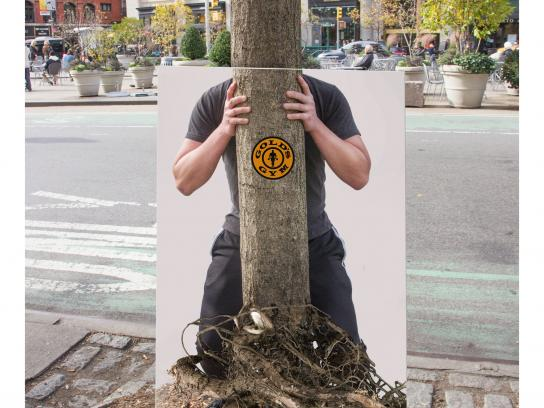 Gold's Gym Outdoor Ad - A stronger you, 2