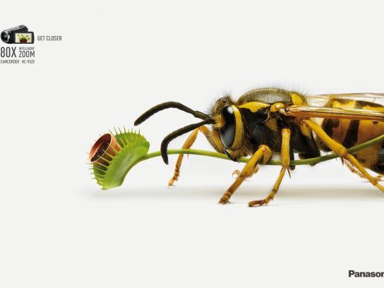 Panasonic Print Ad -  Wasp