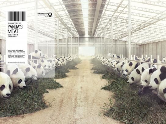 Conservation International Print Ad -  Panda