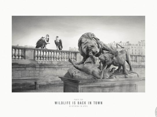 Paris Zoo Print Ad -  Wildlife is back in town, 3