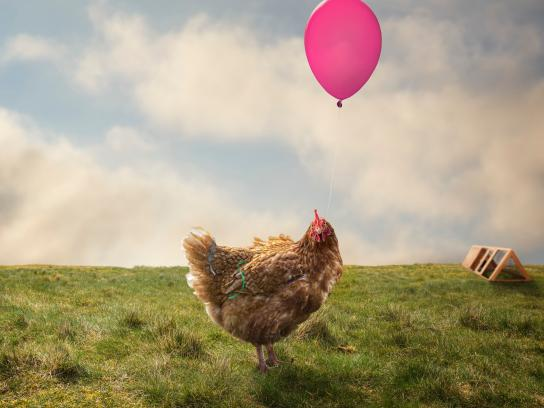World Meat Free Day Print Ad - Party chicken